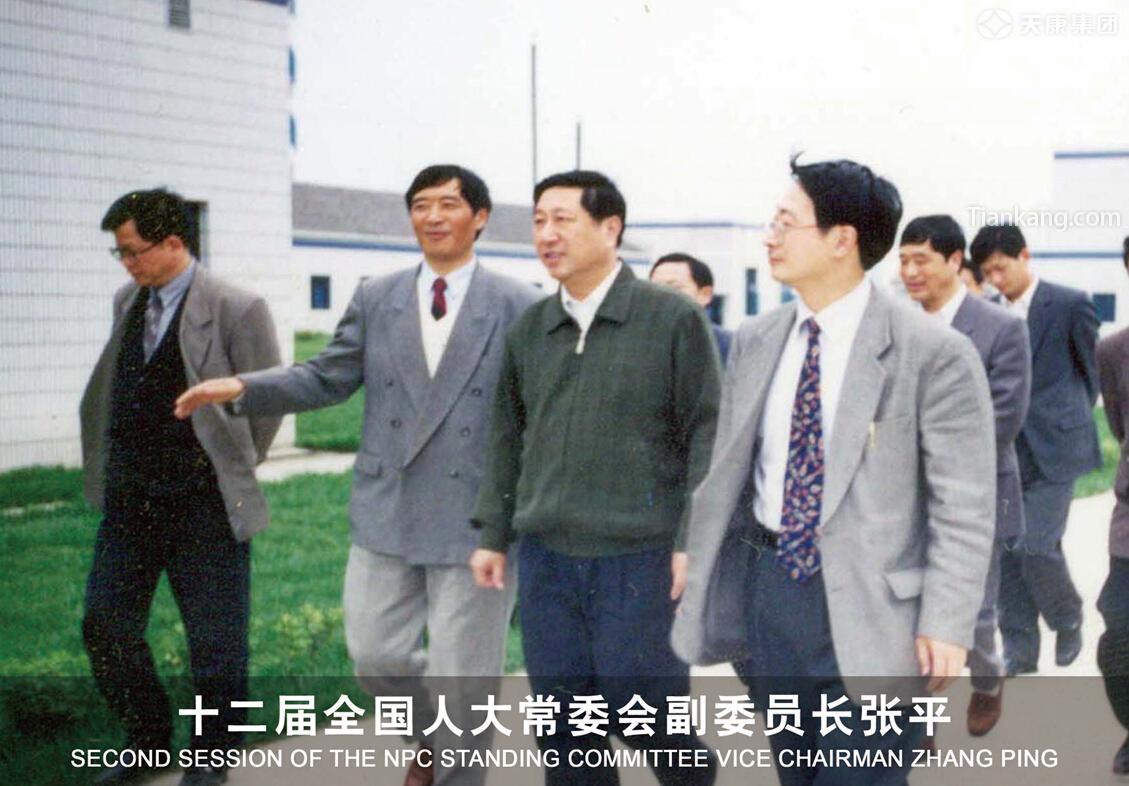 十二届全国人大常委会副委员长张平